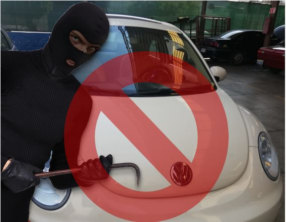 Protección para Cofre de Auto en Guadalajara